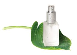 Magnesium Spray | Magnesium Oil, Nature's Gift of Good Health